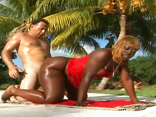 Sensual black chick fuck with a big white dick